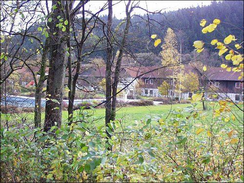 aig_fischer_steinwiesen10